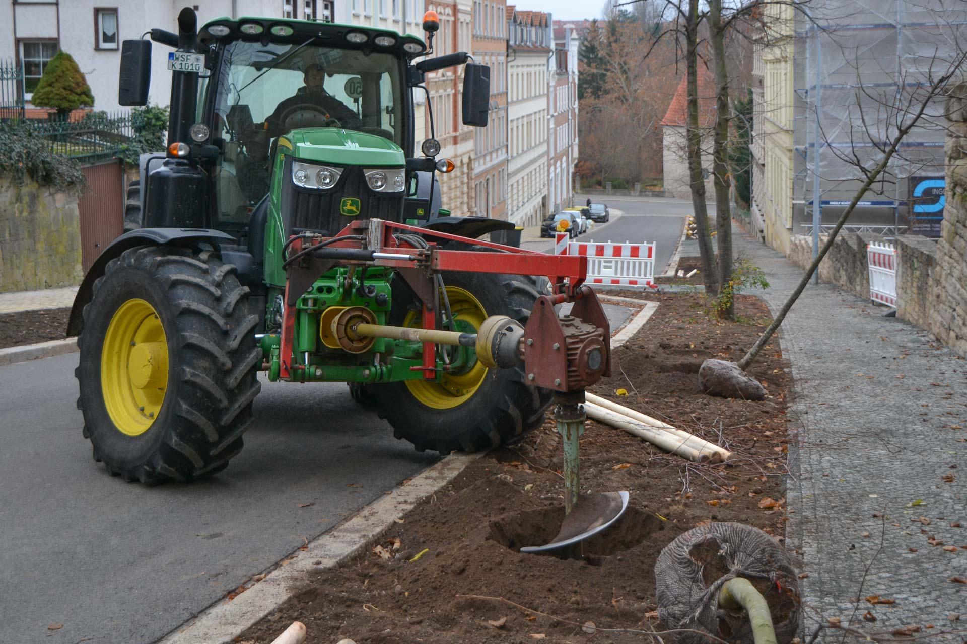 Strassenbegleitgrün und Baumpflanzung